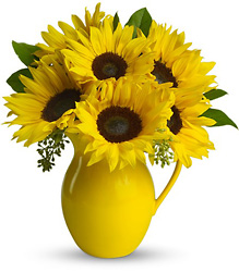 Teleflora's Sunny Day Pitcher of Sunflowers from Gilmore's Flower Shop in East Providence, RI