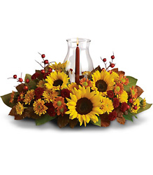 Sunflower Centerpiece from Gilmore's Flower Shop in East Providence, RI